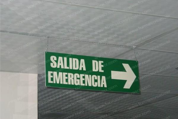 seguridad6